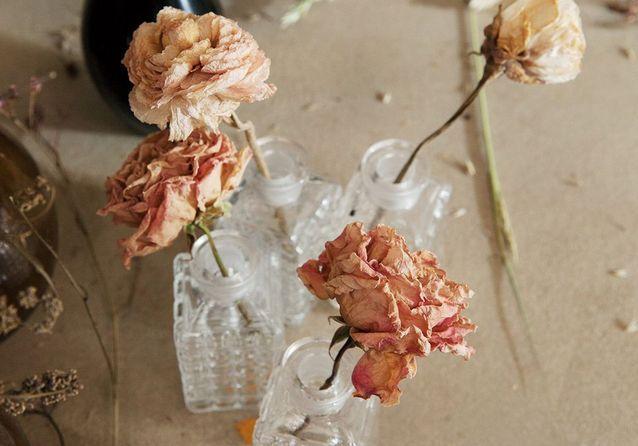 Le grand retour des fleurs séchées